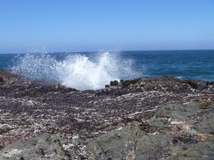 6.23.15 rising tide