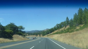 Wine country outside Redwood Valley, CA