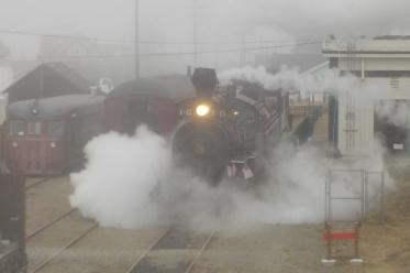 7.24.15 Skunk train steam-004sm