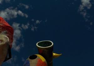 9.16.15 Woman w Bird-006sma