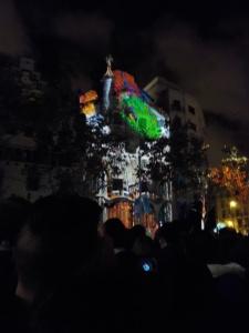 9.23.15 Casa Batllo-026sm