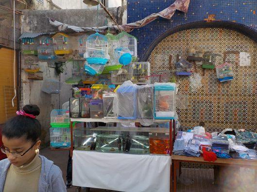 3.29.16 Rabat Medina-004