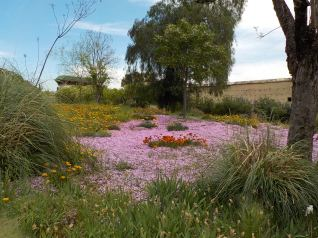 4.27.16 Jnane Sbil garden-004