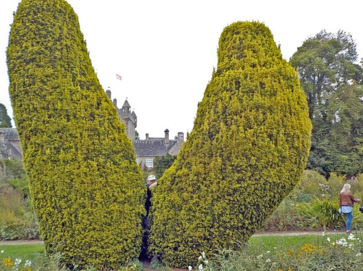 Jonathan in the topiary