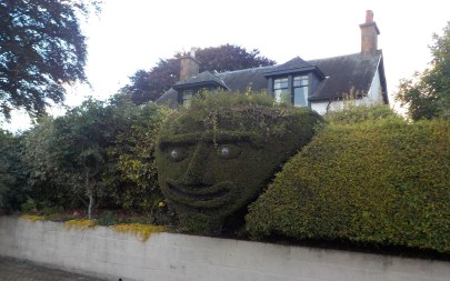 A neighbor's topiary