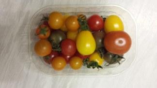 9-27-16-skye-tomatoes