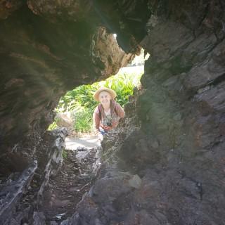 Looking through a hollow log.