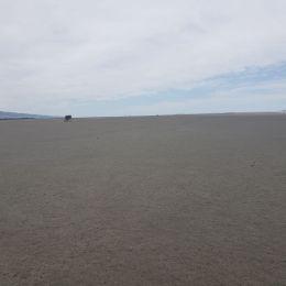 12.20.18 muddy lake ellesmere jarvis rd.-004sm